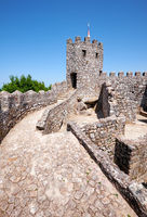 The curtain walls and solid tower of the Castle of the Moors.  Sintra. Portugal