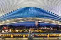 Bahnhof Liege Guillemins Lüttich Station Zug Santiago Calatrava Belgien