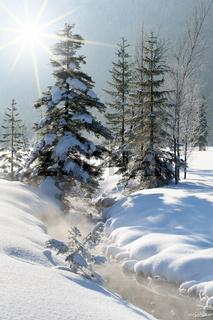 Quelle der Ammer im Graswangtal in Bayern im Winter