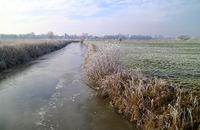 Winter am Wybelsumer Tief in Ostfriesland