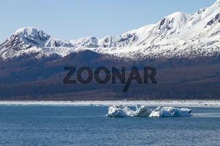 Iceberg Floating in Sea Close to Hubbard Glacier in Alaska