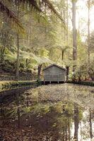 Boathouse Serenity