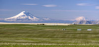 Mount Adams Mt Rainier Farm Agriculture Oregon Landscape