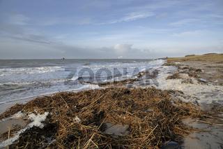 Sturmflut am Rysumer Nacken in Ostfriesland