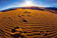 Early morning in desert