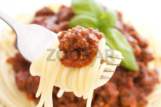 Spaghetti with bolognese sauce as closeup on a fork