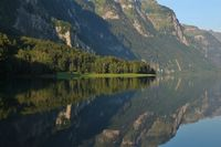 Green meadow and forest at lake Klontalersee, Switzerland. Camping site in Glarus canton.