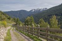 Pinehochebene im Trentino