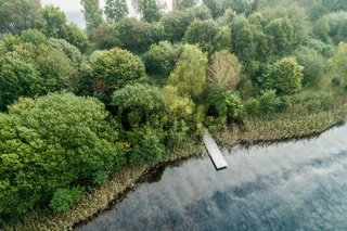 Fishing jetty at a pond with cloud reflections and a forest with green trees on the shore, aerial photo