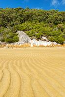 Seashore Landscape Background