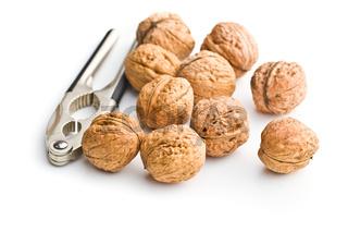 Tasty dried walnuts and nutcracker.