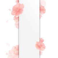 Border With Flowers And White Background