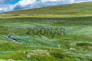 Landschaft in Jotunheimen-87