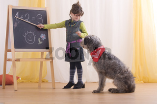 Hundeschule, Dog school