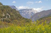 Im Val Cavedine