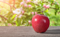 Red apple on a wooden table