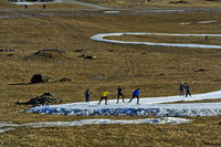 Skilangläufer trainieren auf Schlaufen improvisierter Loipen aus Kunstschnee im Gras, Frankreich