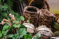 Boots made of birch bark with leaves in a garden