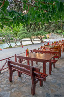 Street cafe under trees