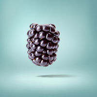 Ripe blackberry isolated on a blue background
