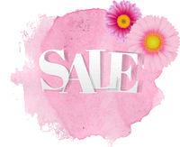 Sale Poster Gerbers Transparent Background