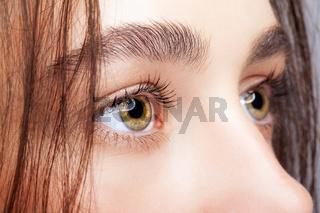 Female face makeup