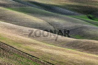 Tuscan land