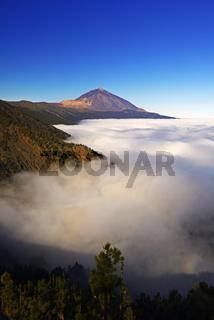 Pico del Teide bei Sonnenaufgang über Passatwolken, Nationalpark