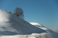 Winter minimalistic landscape of a snow-capped hill on which a lonely tree stands against a blue sky on the shady side
