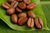 Fair trade organic coffee beans.