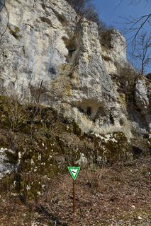 Felswand mit Wanderfalkennest, Schwaebische Alb