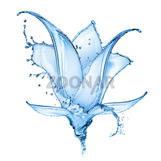 flower made of water splashes