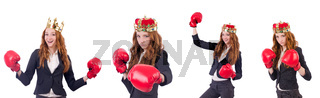 Queen boxer businesswoman isolated on white
