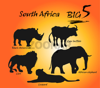 Big five in Africa. Illustration vector arts.