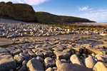 UK Southerndown Beach Early Morning Light