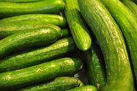 frische grüne Gurken mit Wassertropfen