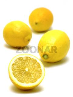 Zitronen / lemons (citrus limon)