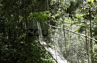Hängebrücke in Ecoparque de Una, Bahia, Brasilien, Südamerika