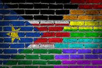 Brick wall texture - Flag of South Sudan with rainbow flag