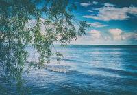 Russian landscape, Kama river.