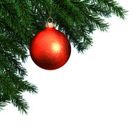3d Rendering branch of the New Year fir tree