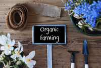 Spring Flowers, Sign, Text Organic Farming