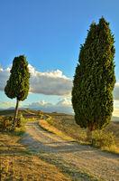 Wanderweg in der Toskana