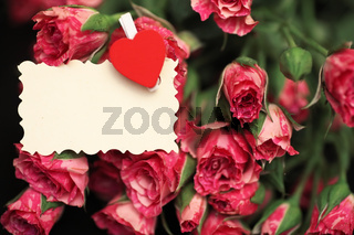 Bouquet of red roses on a black matte background
