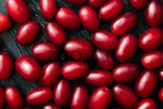 Dogwood red berries