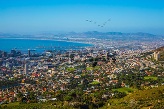 Cape Town from top of the Table mountain