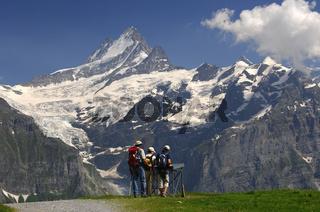 Wanderer an einer Orientierungstafel, Grindelwald
