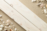 Sandy Beach Background with Shells and Stones