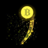Colden Bitcoin is Flying. Crypto Currency Icon