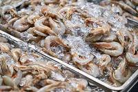 Lot of shellfish on market